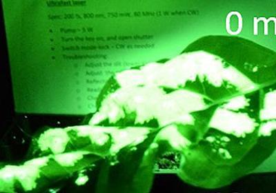 「LEDライトの光を蓄えて暗闇で光る植物」を科学者が開発、何度も光を当てて再チャージすることが可能