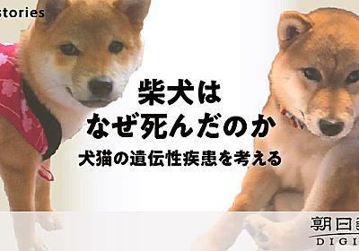 別の飼い主、別の場所、3匹の柴犬はなぜ死んだ 犬猫の遺伝子を追う:朝日新聞デジタル