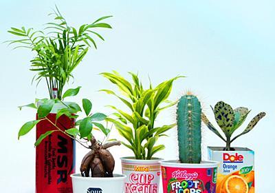カオティックな植物写真:「バグ」が園芸の可能性を拡張する WIRED.jp