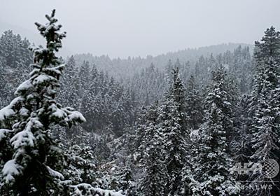 気温31度急低下、24時間で猛暑から降雪へ 米コロラド州 写真14枚 国際ニュース:AFPBB News