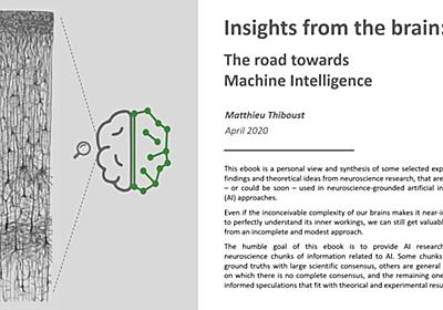 Insights from the brain: The road towards Machine Intelligence