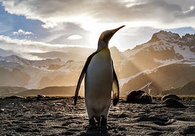 なぜペンギンにとってイギリスのEU脱退が大きな痛手となるのか? - GIGAZINE