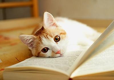 ちょっと聞きたいんだけど、自己啓発本を読んで自己啓発できた人っているの?:哲学ニュースnwk