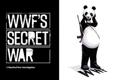 WWFが人権侵害を繰り返すレンジャーに出資 数々の暴行も黙認か