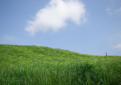 Windows XPの壁紙で見た「あの草原」のような風景が日本にもあった?【極上のあか牛丼】 - メシ通 | ホットペッパーグルメ