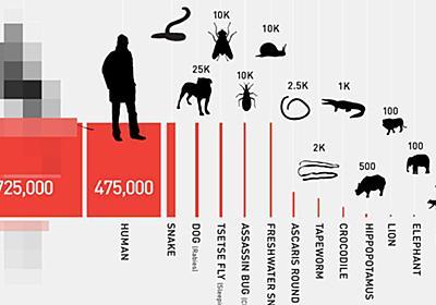 どの動物が人間を一番殺しているのか...? ビル&メリンダ・ゲイツ財団がまとめた驚きの結果 | ハフポスト