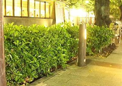 「力試し」で道路標識引き抜いた怪力男、京都府警に書類送検…力余って高瀬川に投げ入れる - 産経WEST