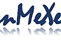 Incremental MEDLINE Expression Search: inMeXes