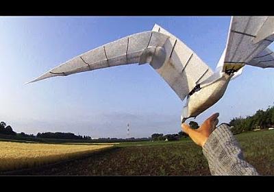 鳥型羽ばたきドローンの開発 試作一号機 - YouTube