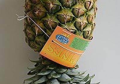 家庭科教材本で食べ物豆知識ラッシュ - デイリーポータルZ