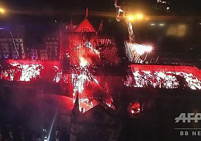 ノートルダム火災、これまでに判明している被害状況 写真12枚 国際ニュース:AFPBB News