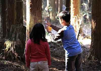住宅新築やリフォームに 柱100本プレゼント 「林業再生に」奈良・十津川村の森林組合(1/2ページ) - 産経WEST
