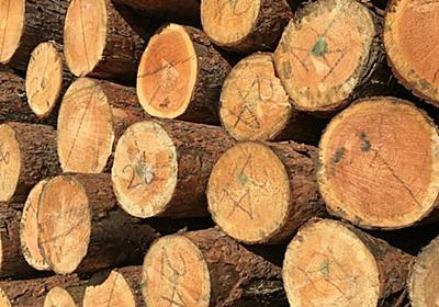 新型コロナ: 住宅業界に「ウッドショック」 突然始まった木材高騰: 日本経済新聞