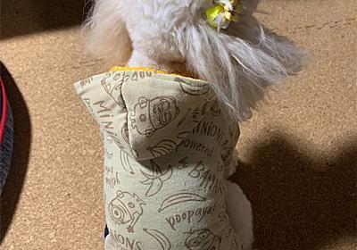 犬服のフードの形にこだわってみました - トイプーとまったり手作り生活