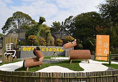 来年の年賀状の撮影場所はココで決まり!日本でここだけの希少動物にも会える横浜・野毛山動物園 | 神奈川県 | LINEトラベルjp 旅行ガイド