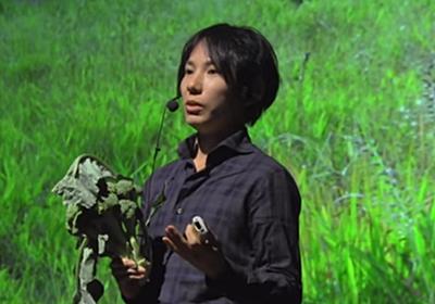 無農薬栽培でも野菜に虫がつかない 新しい農業の形とは - ログミーBiz