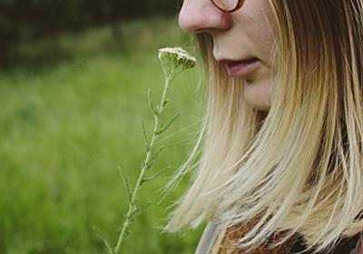 霊長類の「嗅覚依存」から「視覚依存」への移行の謎、解明へ - NEWS SALT(ニュースソルト)