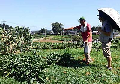 【自然農】高萩さんと草っぽ農園の圃場見学に行く【水戸】 | ちょっと自然な生活in茨城