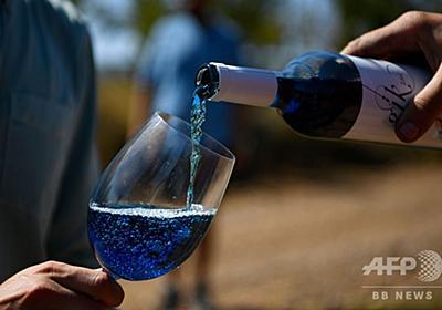 「青ワイン」で業界に新風、スペイン学生スタートアップ企業の冒険 写真10枚 国際ニュース:AFPBB News