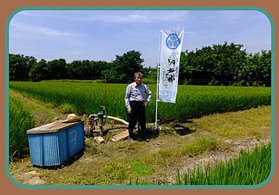 五ツ星お米マイスターのいる米屋 小江戸市場カネヒロは川越の米屋です。