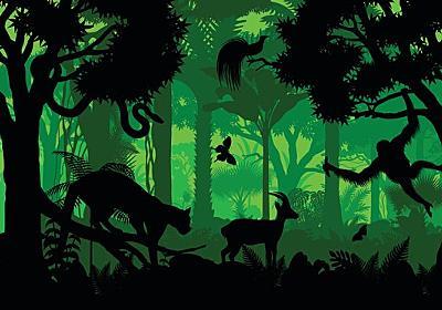 人間から逃れるため哺乳類の夜行性化が進んでいる(米研究) : カラパイア