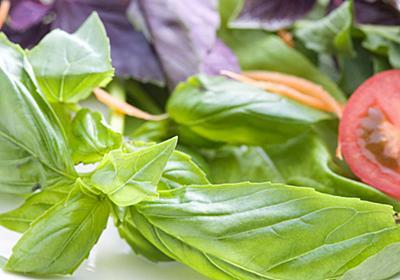 AIで野菜栽培、1年で300年分進歩した農業ベンチャー「プレンティ」の秘密   日経 xTECH(クロステック)