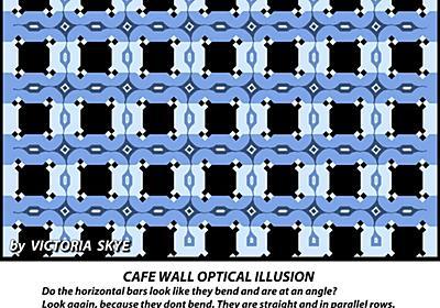 【画像】マジで格が違う錯視が見つかる : 哲学ニュースnwk
