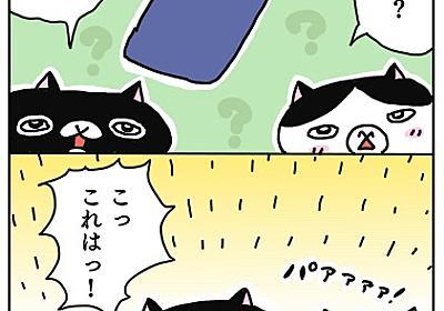 キャンドゥで見つけた優れもの☆ - ネコノラ通信web