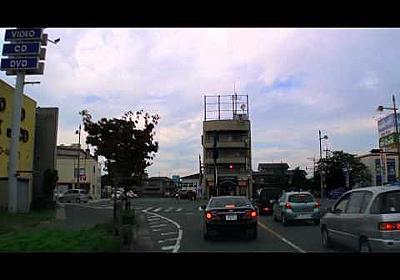 NSD 2-55 [ホームセンターサンコー-ケーズデンキ-レッドキャベツ]
