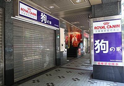 台湾の「狂犬病ウイルス」はどこからやってきたのか? - ライブドアニュース