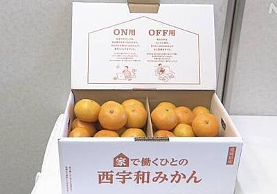 在宅勤務に「オン」「オフ」みかん 休憩との切り替えに 愛媛 | 新型コロナウイルス | NHKニュース