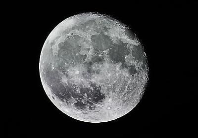 月面に墜落した月探査機に数千匹のクマムシが乗っていたことが発覚、月面で繁殖する可能性も - GIGAZINE
