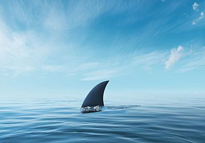 頭が2つあるサメが捕獲される。「インド沖で見つかるのはとても珍しい」 | ハフポスト