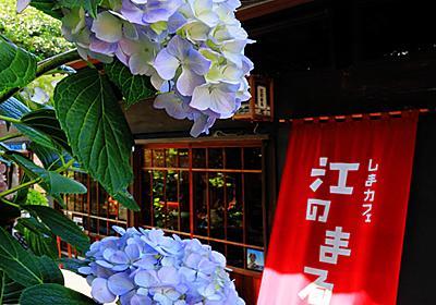 湘南です15 天女の島 江ノ島アラカルト(紫陽花、エンタメ、食、猫サマ) - なーまんのEye-Level