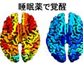 """重度の脳障害患者が「睡眠薬」によって、逆に""""意識を取り戻す""""事例が報告される - ナゾロジー"""