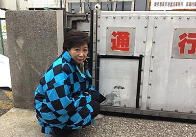 """小池百合子 on Twitter: """"あのバンクシーの作品かもしれないカワイイねずみの絵が都内にありました! 東京への贈り物かも? カバンを持っているようです。 https://t.co/aPBVAq3GG3"""""""