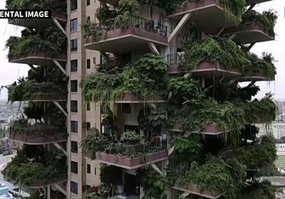 植物で覆われたファンタジー感あふれるマンションになるはずが蚊の襲来で住人が退去、マンションはジャングルへ - GIGAZINE
