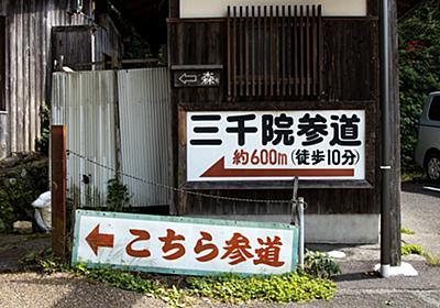 苔の庭園が美しい京都屈指のパワースポット!京都大原三千院で京都らしいものを食らう。 - 暮らしの顛末(くまくまコアラ)