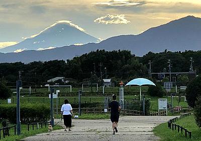 綾瀬市の全地区を歩いたら見えてきたこと :: デイリーポータルZ