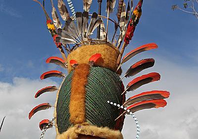 コウモリを食らう裸のヨシダナギ/よく分かるパプアのカラム族