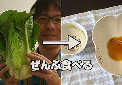 バカ食いしたいときの新提案「でかい野菜をまるっと食べる」 :: デイリーポータルZ