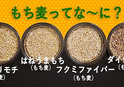 「もち麦」とはなんなのか…? いろんな品種のもち麦を食べてみる - ぐるなび みんなのごはん