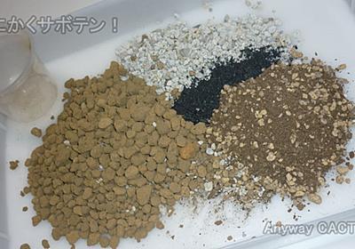使い回し、再利用でサボテン用土をブレンド!【サボテン ダイソー】 - とにかくサボテン!
