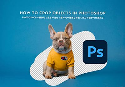 Photoshopの画像切り抜きが進化!髪の毛や複雑な背景もほんの数秒で作業完了 - PhotoshopVIP