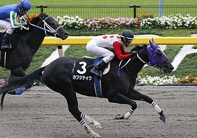 カフジテイク、フェブラリーSの鞍上は津村明秀騎手に決定 | 競馬ニュース - netkeiba.com