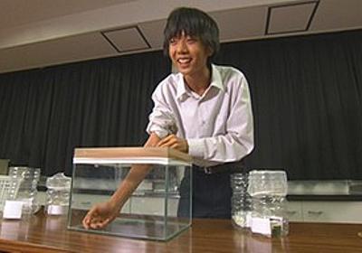 痛いニュース(ノ∀`) : 高校生が妹の協力で「蚊」の習性の一つを発見 意外な方法で刺される回数を激減させることに成功 - ライブドアブログ