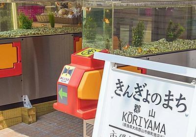 金魚好き必見!奈良の大和郡山は金魚だらけの街だった!│観光・旅行ガイド - ぐるたび