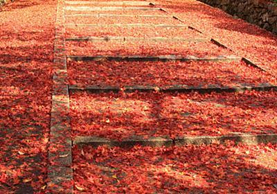 秋を先取り!京都で出会える絶景穴場紅葉スポット11選 | RETRIP[リトリップ]