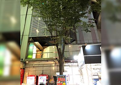 『街路樹がやばい腐朽菌ベッコウタケに寄生されてる』キノコに詳しい方による注意喚起がタメになる「近所のも注意して見てみよう」 - Togetter