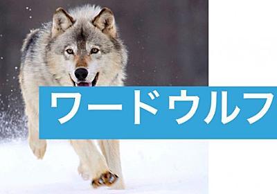新しい遊び「ワードウルフ」が面白い!【新感覚人狼】